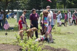 Sandyvale Dog Park